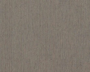 BN Wallcoverings - Voca Nomadics (17232)