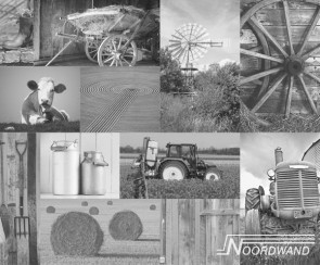 Noordwand Farm life  (3750002)