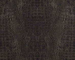 BN Wallcoverings - Voca Curious (17950)